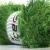 Lot of 4 x 100gr Skeins Ice Yarns EYELASH 100GR Yarn Jungle Green